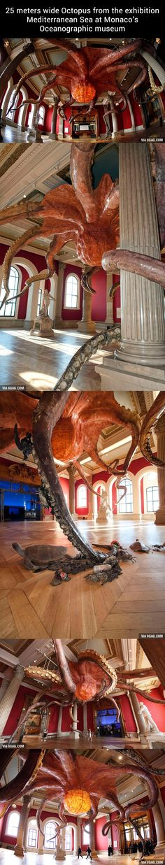 A 25 meters wide Octopus from the exhibition Mediterranean Sea at Monaco's Oceanographic Museum.