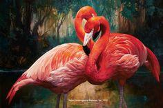 Flamingos by Julie Bell. Original fine art oil painting of flamingos by award winning artist Julie Bell. Prints available. Julie Bell, Flamingo Painting, Flamingo Art, Flamingo Pictures, Bird Pictures, Bell Art, World Birds, Watercolor Bird, Wildlife Art