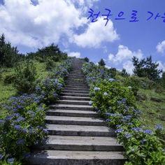 Travel Tips, Places To Go, Sidewalk, Stairs, Paths, Stairway, Travel Advice, Side Walkway, Walkway