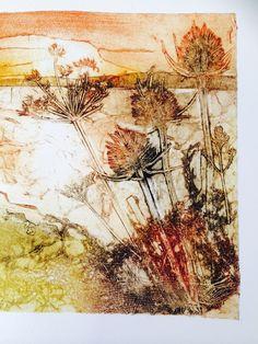 Collagraph, Sally winter