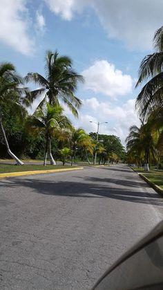 Foto Isla Cozumel,Mexico! by Roberto Croizay