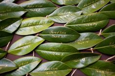 gold writing on leaves for escort cards