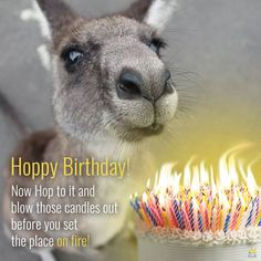 Cute Happy Birthday Messages to Make Them Crack a Smile! Cute Happy Birthday Messages, Birthday Greetings For Mother, Funny Birthday Message, Happy Birthday Best Friend, Happy Birthday Funny, Happy Birthday Quotes, Happy Birthday Images, Birthday Wishes, Birthday Sayings