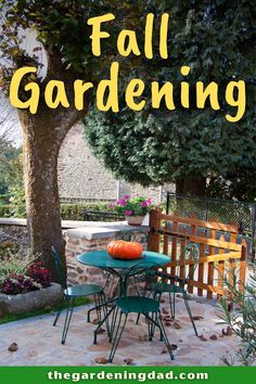 Read this article to learn about Fall Gardening! This will give you beginner-friendly tips on how to garden in the fall, along with the Best Vegetables to grow in the fall! #gardening #garden #vegetables Backyard Farmer, Backyard Patio, Growing Herbs, Growing Vegetables, Cold Climate Gardening, Lawn And Garden, Garden Tips, How To Make Decorations, Outdoor Living Areas