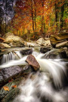 Autumn's Flow