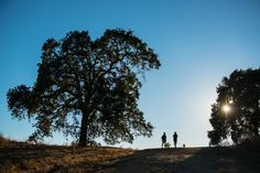 Best hiking in Napa Valley