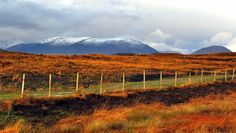 CONNEMARA vivid colours and snowy mountain tops © Annie Japaud Photography