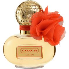 COACH Poppy Blossom ($48) ❤ liked on Polyvore featuring beauty products, fragrance, perfume, beauty, makeup, jewelry, floral fragrances, coach fragrance, fruity perfume and coach perfume