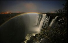 Image result for luna rainbow bow