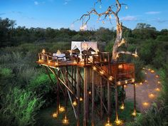 This exotic hotel, called Lion Sands Game Reserve, is located in South Africa and is comprised of three tree houses that function as natural hotel rooms. Hotels And Resorts, Best Hotels, Luxury Hotels, Luxury Travel, Amazing Hotels, Unusual Hotels, Luxury Rooms, Luxury Camping, Luxury Accommodation