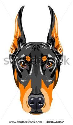 Portrait of a black doberman pinscher - stock vector