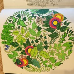 Johanna Basford | Colouring Gallery /  Sarah B