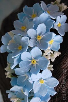 forget me not wedding hair band