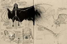 sketchbooks of designers | sketchbook exploring bats by product designer Chris Armstrong , a ...