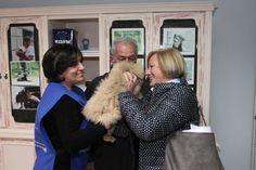 Uno dei tanti viaggi dall'Est Europa di traffico di cuccioli. Per i più fortunati di loro è arrivato il lieto fine.