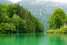 This green-colored lake is located deep in the lush forests of Austria.