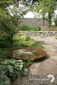 shallow dish of water, for the birds, at Rose cottages and gardens