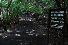 "Aokigahara Forest  ""Please reconsider"" or ""Please consult the police before committing suicide""."