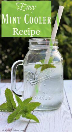 Mint Water Recipe & Benefits | Summer | Hydration | Health
