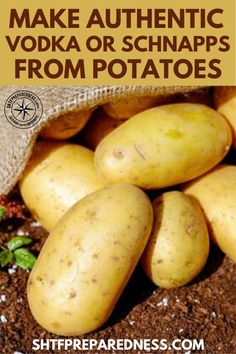 How To Make Authentic Vodka Or Schnapps From Potatoes. See how to make your very own vodka or schnapps at home for cheap using potatoes. Homemade Liqueur Recipes, Homemade Alcohol, Homemade Liquor, Gin Recipes, Alcohol Recipes, Raw Food Recipes, Cocktail Recipes, How To Make Vodka, How To Make Moonshine