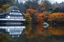 Northern Japan in Autumn-Komaki, great place to feed the koi
