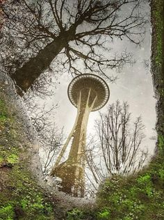 Seattle Reflections : Seattle
