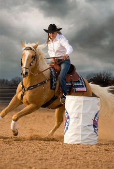 World Champion Barrel Racer and Platinum Performance athlete, Brittany Pozzi and Duke