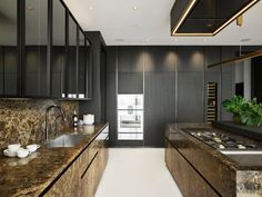 Dark Counters, Built In Refrigerator, Drop In Sink, Sink Design, Expensive Houses, Kitchen Photos, Minimalist Interior, Wood Cabinets, Luxury Living