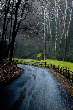 Rural Photography - Cuttalossa Road, Solebury, Pennsylvania by MattMacLeanPhoto on Etsy Beautiful Roads, Beautiful Landscapes, Beautiful World, Beautiful Places, Beautiful Forest, Foto Nature, Landscape Photography, Nature Photography, Photography Tips