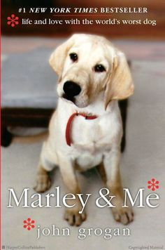 Loved it, a book has never made me laugh out loud and cry even days after finishing the book as much as this.  Maybe it's because I have a lab.  Marley & Me: Life and Love with the World's Worst Dog by John Grogan