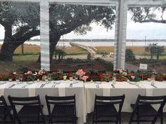 Lowndes Grove Plantation- Wedding Reception.  Fox Events