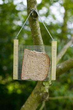 Bird Bread Feeder   How simple would this be to make!  Fold the wire in half and attach to the boards.