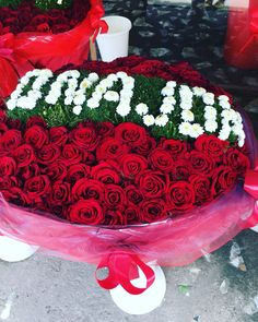 Onajon / mother / flower / i❤️Uzbekistan