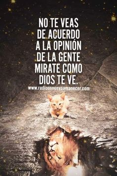 Free Christian Books, Christian Poems, Christian Videos, Spanish Inspirational Quotes, Spanish Quotes, Quotes French, Daddy I Love You, Lion Quotes, Gods Love Quotes