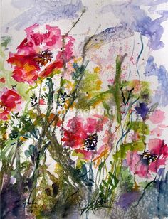 Pink Oriental Poppies Watercolor by Ginette Callaway