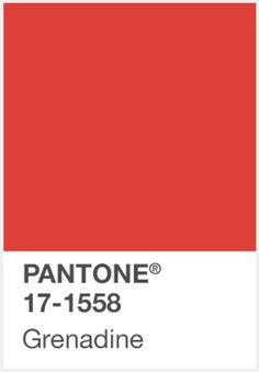 PANTONE-GRENADINE http://www.administrie.com/colour-inspiration/