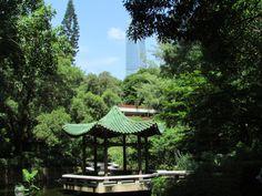 Kowloon park, Hong Kong
