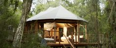 Our Tents | Paperpark Camp
