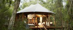Paperbark Camp - Jervis Bay NSW