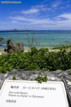 Okinawa Secret Beach. Sea Turtle Beach at Ocean Expo Park Nago City, Okinawa.