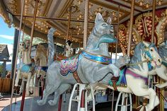 I loved this cat--the first time I've ever seen a cat as a carousel animal.  www.royalgorgebridge.com/Carousel.aspx