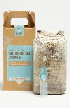 Back to the Roots Mushroom Garden Kit $20 #nordstrom