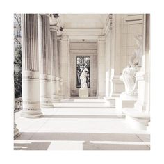 Miss zeit ❤ liked on Polyvore featuring photos, pictures, backgrounds, images, aesthetic and filler