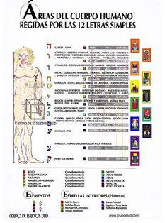 INFLUENCIAS ESPIRITUALES EN EL CUERPO by grupoejud, via Flickr