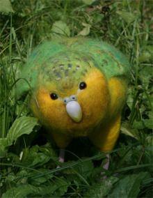 $ぐるどねの木の下で-kakapo