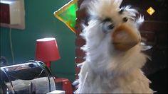 HBB - het oog. Aflevering 416. Raaf en Fahd bespreken in het clubhuis alle zintuigen. Het oog wordt in deze aflevering van dichtbij bekeken. Hoe werkt het oog precies en welk dier heeft de beste ogen?