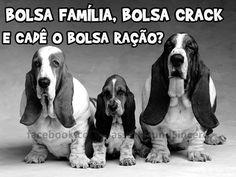 Brasil-Bolsa Família, Bolsa Crack-2013-Frase-Bolsa Família, Bolsa Crack e cadê...
