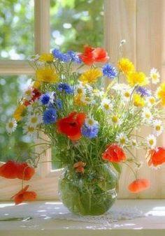 Trendy Ideas for flowers red bouquet My Flower, Fresh Flowers, Flower Power, Wild Flowers, Beautiful Flowers, Flower Colors, Yellow Flowers, Spring Flowers, Beautiful Flower Arrangements