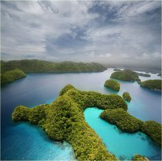 Мои сны #микронезия #палау #остров корор #съемка с вертолета Автор: Lampadina (Svetlana Maximova)