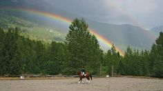 PHOTO COURTESY OF DREAMCATCHER MEADOWS - A picturesque double rainbow crowns Giese as she trots. The Dream of Dreamcatcher Meadows In 10 years, these Hanoverian horse-farm owners have gone from start-up to top of the class by Cathryn Atkinson Horse Shop, Horse Farms, Training Center, Whistler, Has Gone, Dressage, Equestrian, Dream Catcher, Country Roads